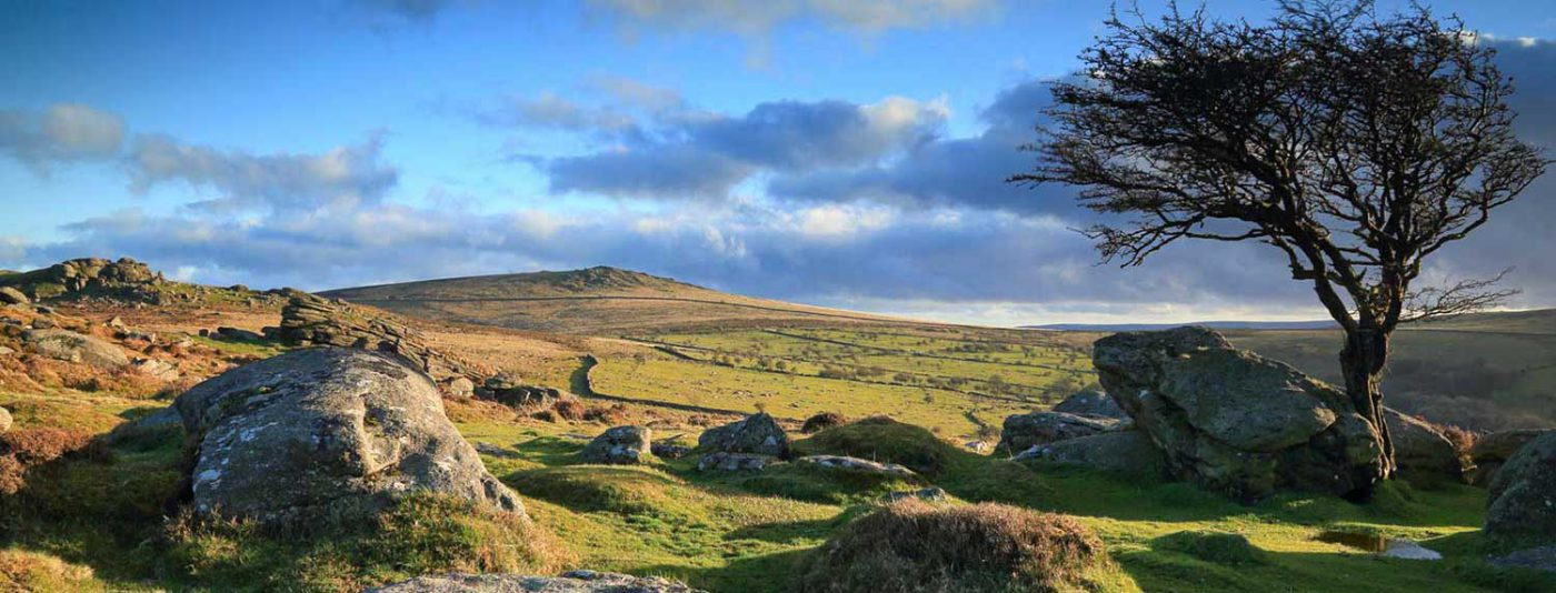 Your gateway to Dartmoor