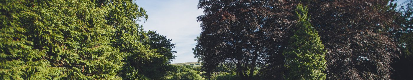 Lydford House Hotel and Restaurant on the edge of Dartmoor